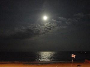 San Francesco di notte